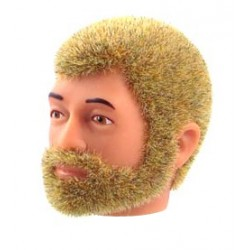 Tête de Tom repro barbu blond