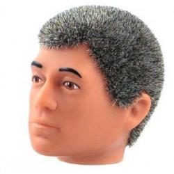 Tête repro cheveux gris